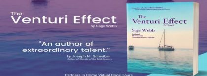 Review: The Venturi Effect by Sage Webb